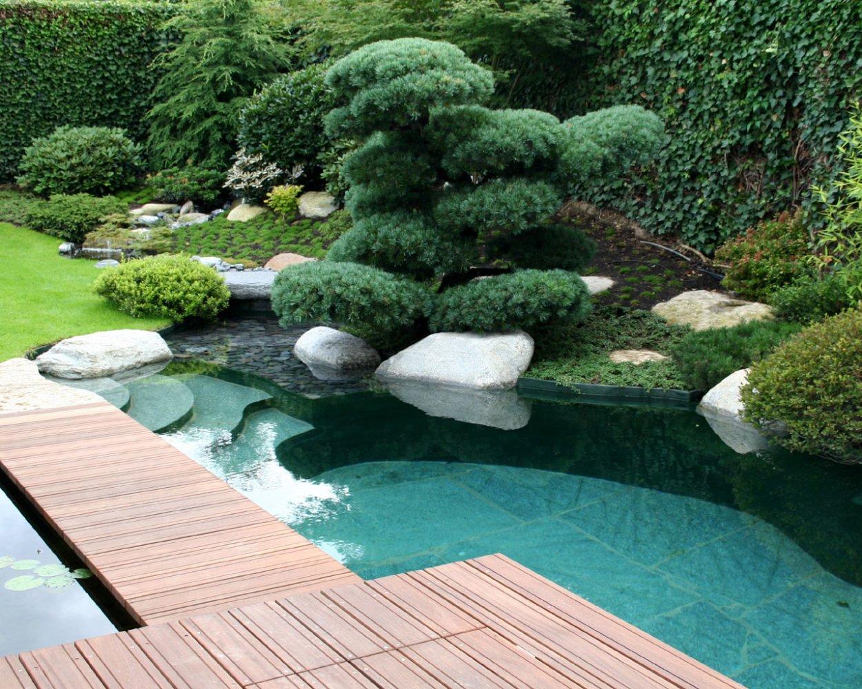 Natural pools wasser garten kirchner - Gartengestaltung mit wasser ...